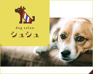 dog salon シュシュ